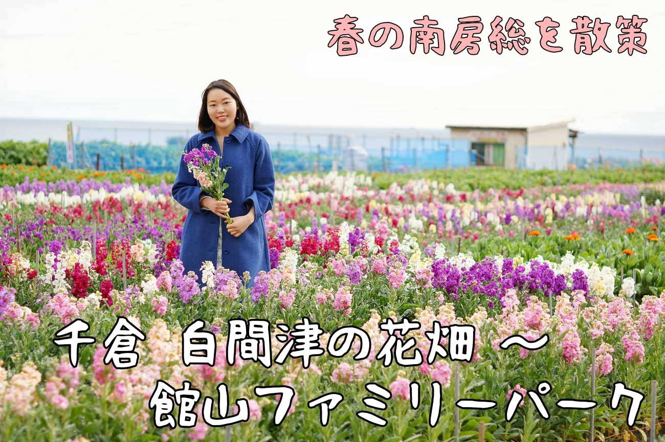房総ガール:千倉 白間津の花畑~館山ファミリーパーク