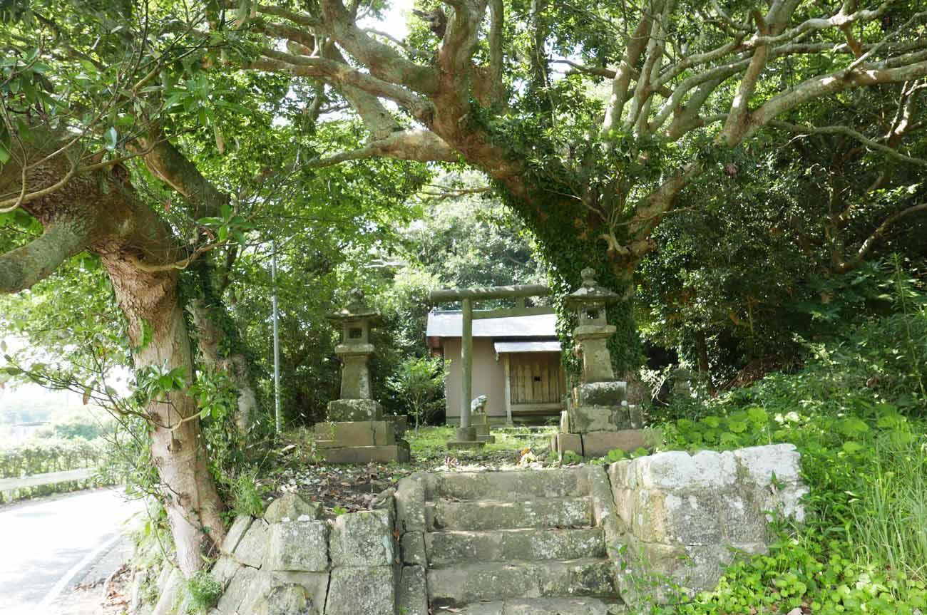 日枝神社境内の画像