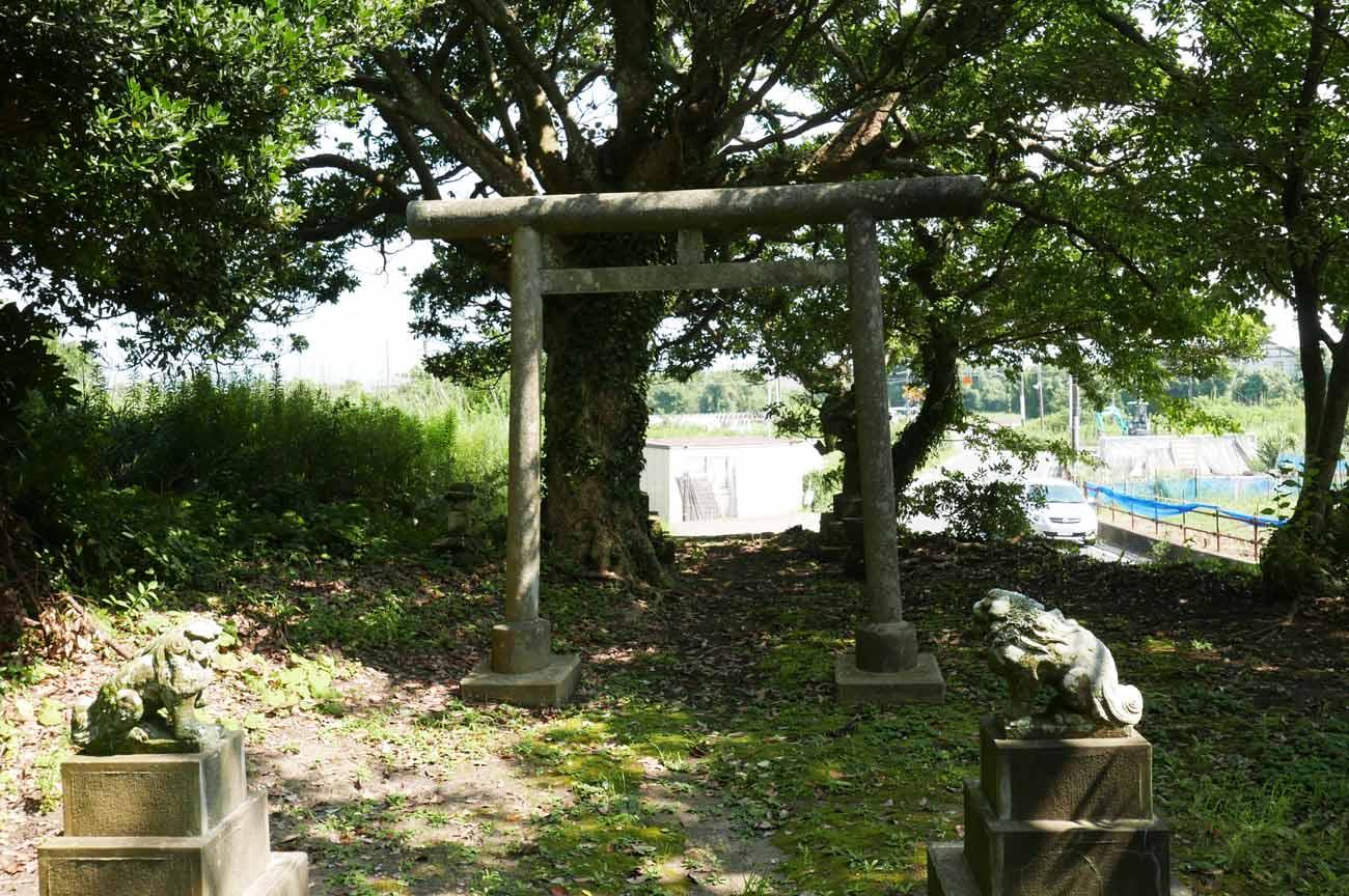 日枝神社の鳥居の画像