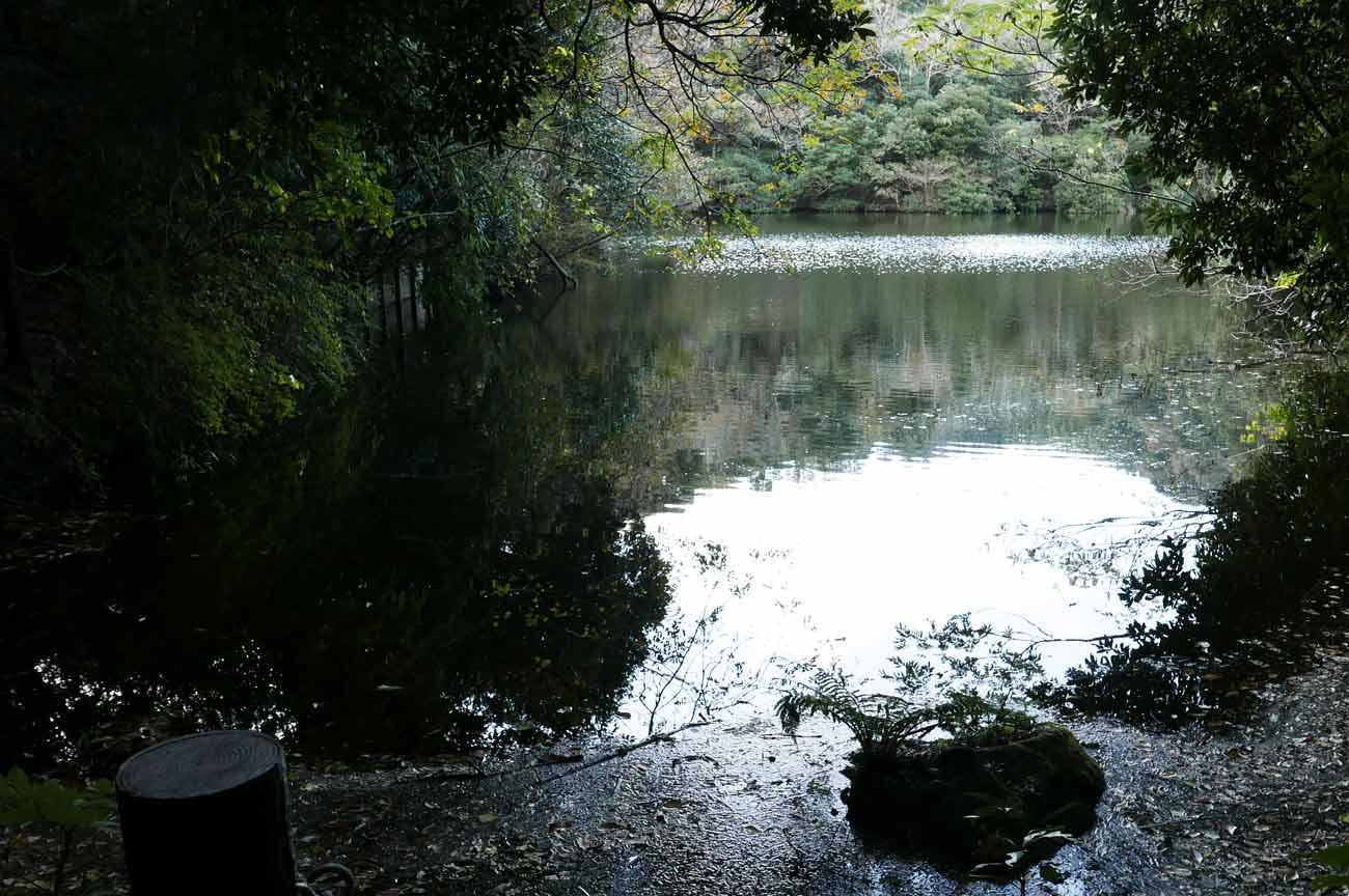 岩婦湖ワンドの画像