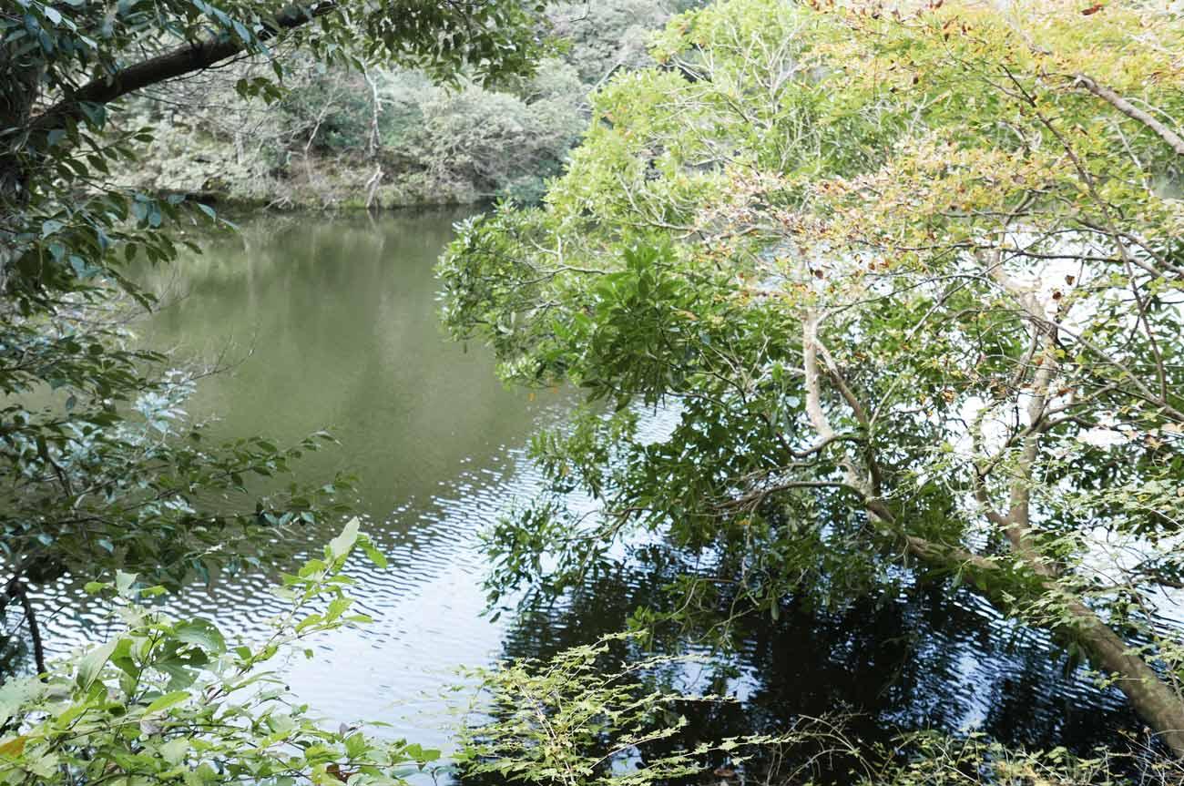 岩婦湖のポイント3の画像