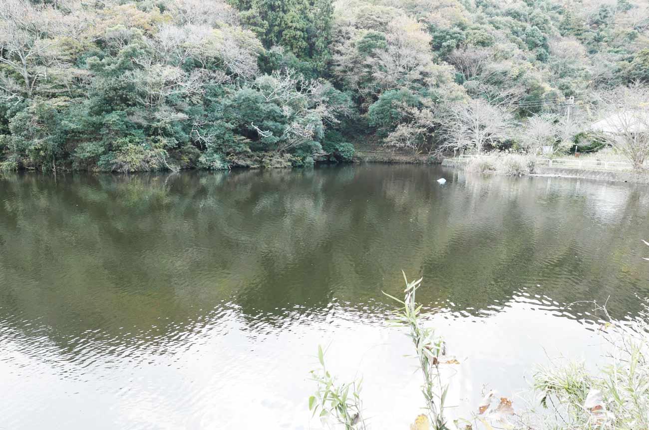 岩婦湖全景の画像