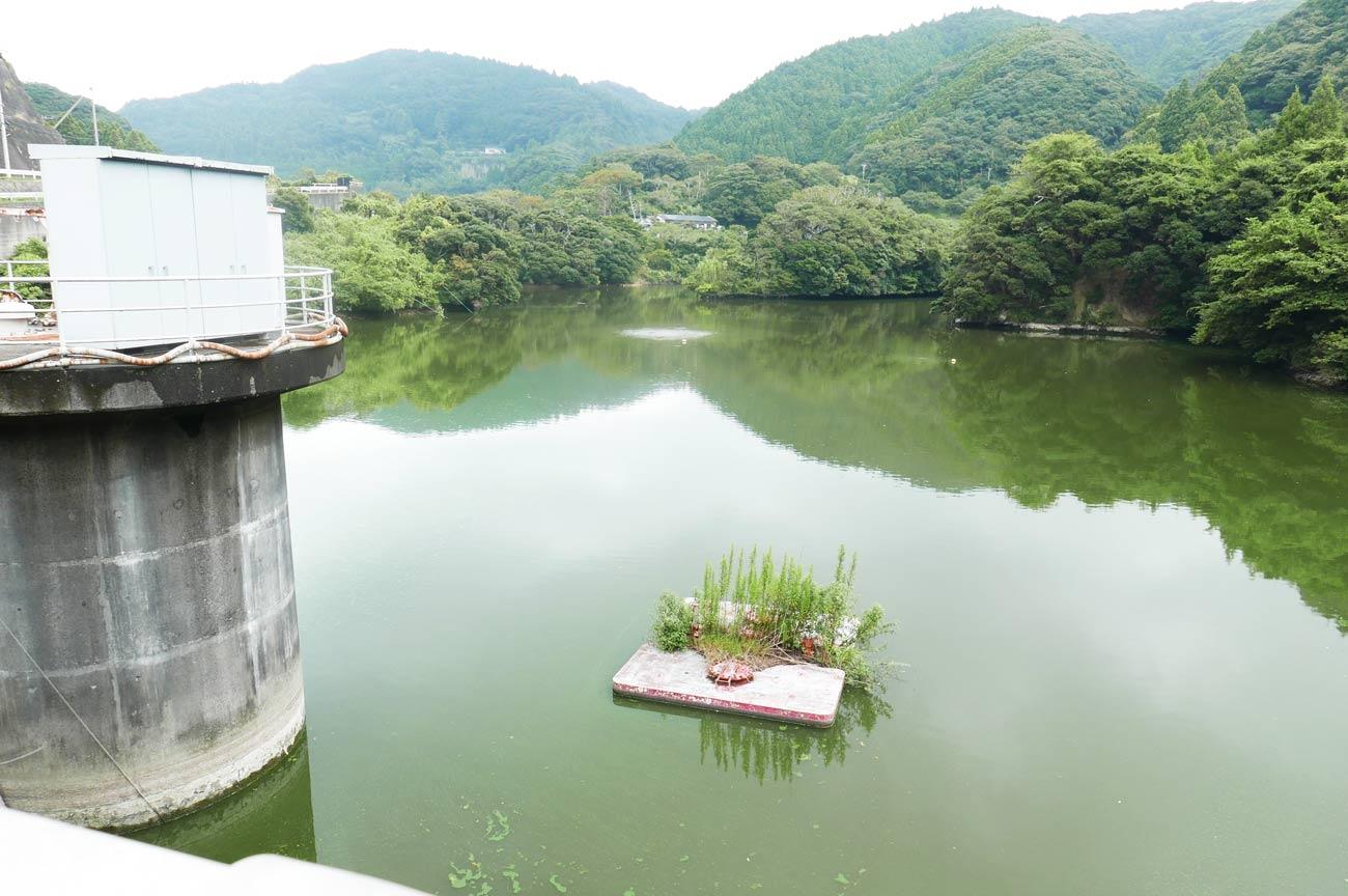 小向ダムの取水設備の画像