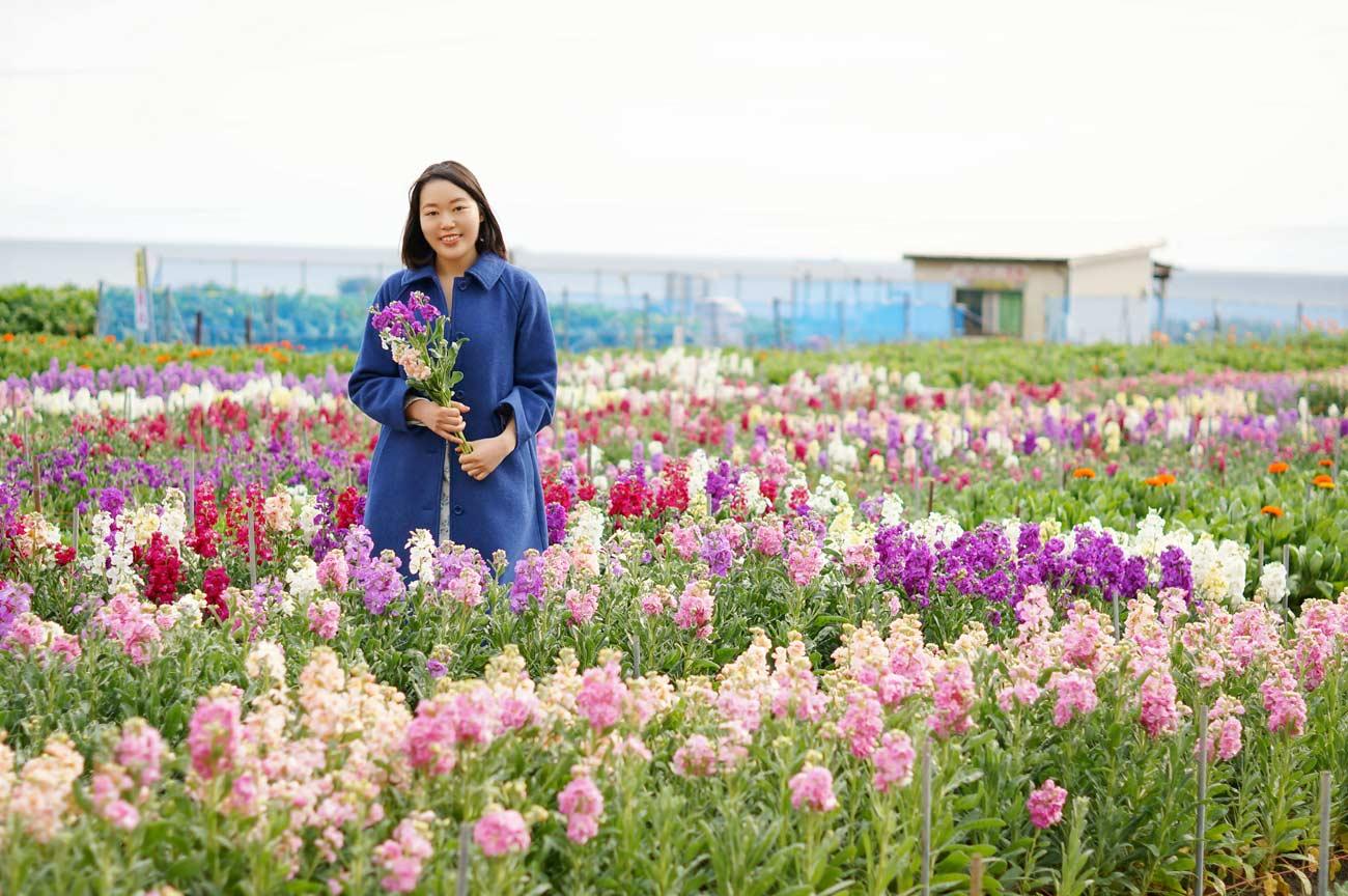 千倉 白間津の花畑で微笑む女性