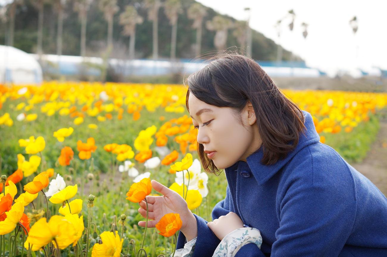 館山ファミリーパークでポピーと戯れる