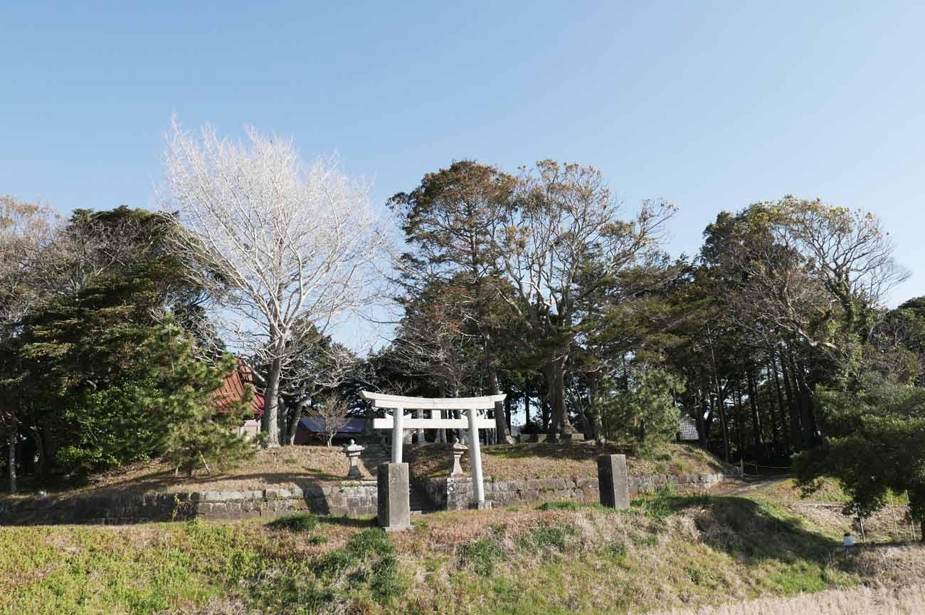 八坂神社全景画像