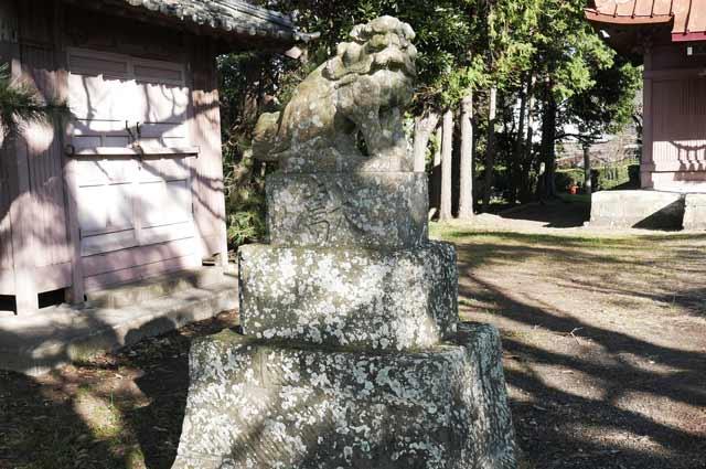 八坂神社の狛犬(左)の画像