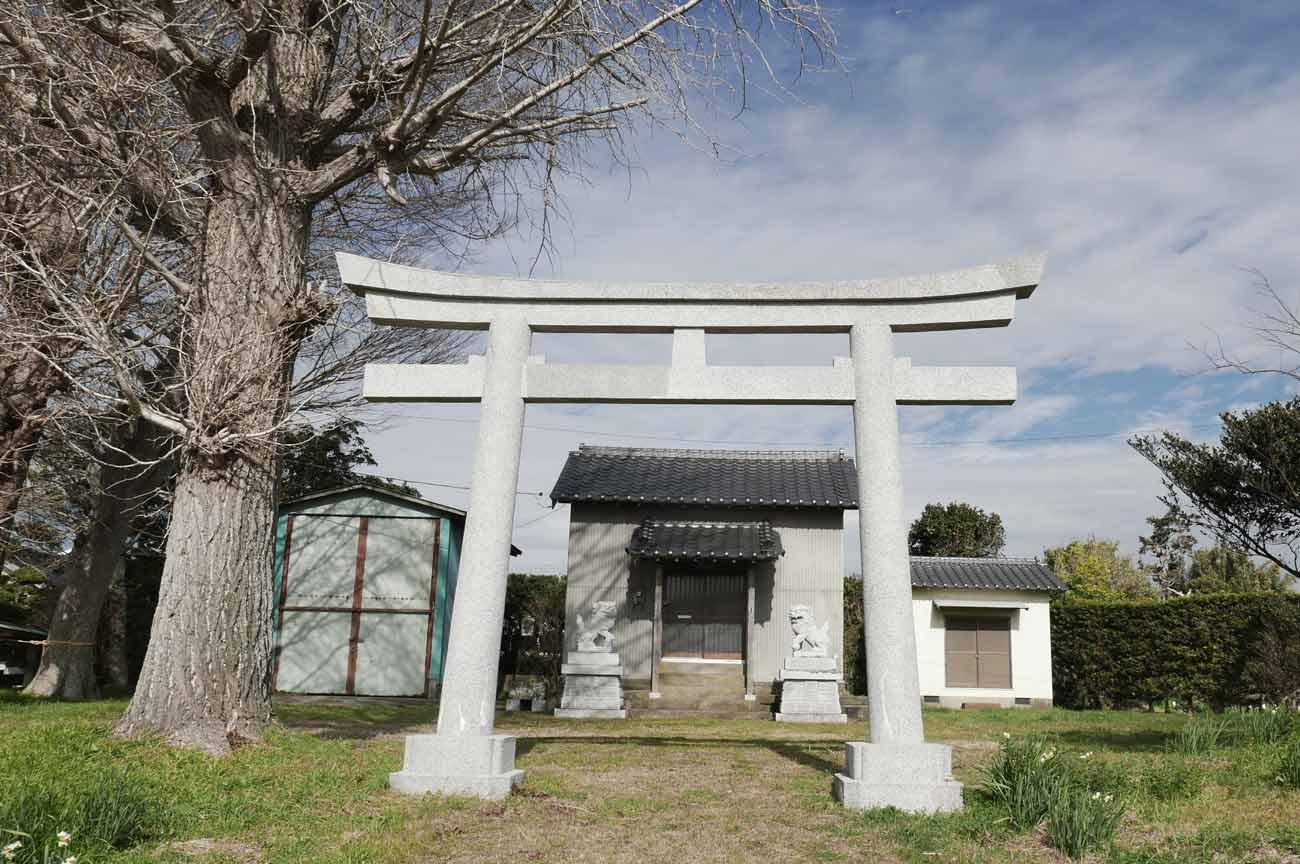 本織神社の鳥居と拝殿の画像