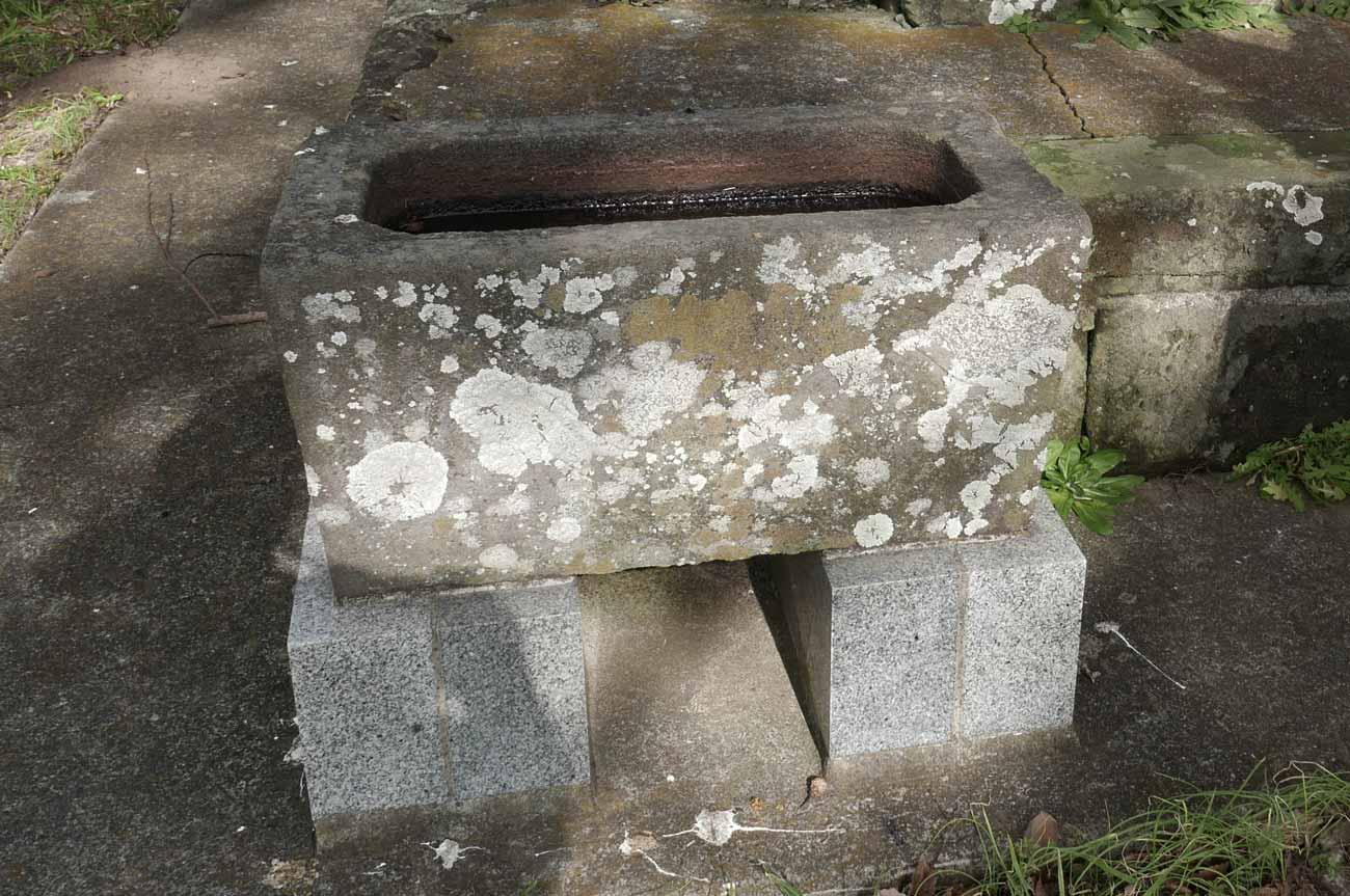 本織神社の手水石の画像
