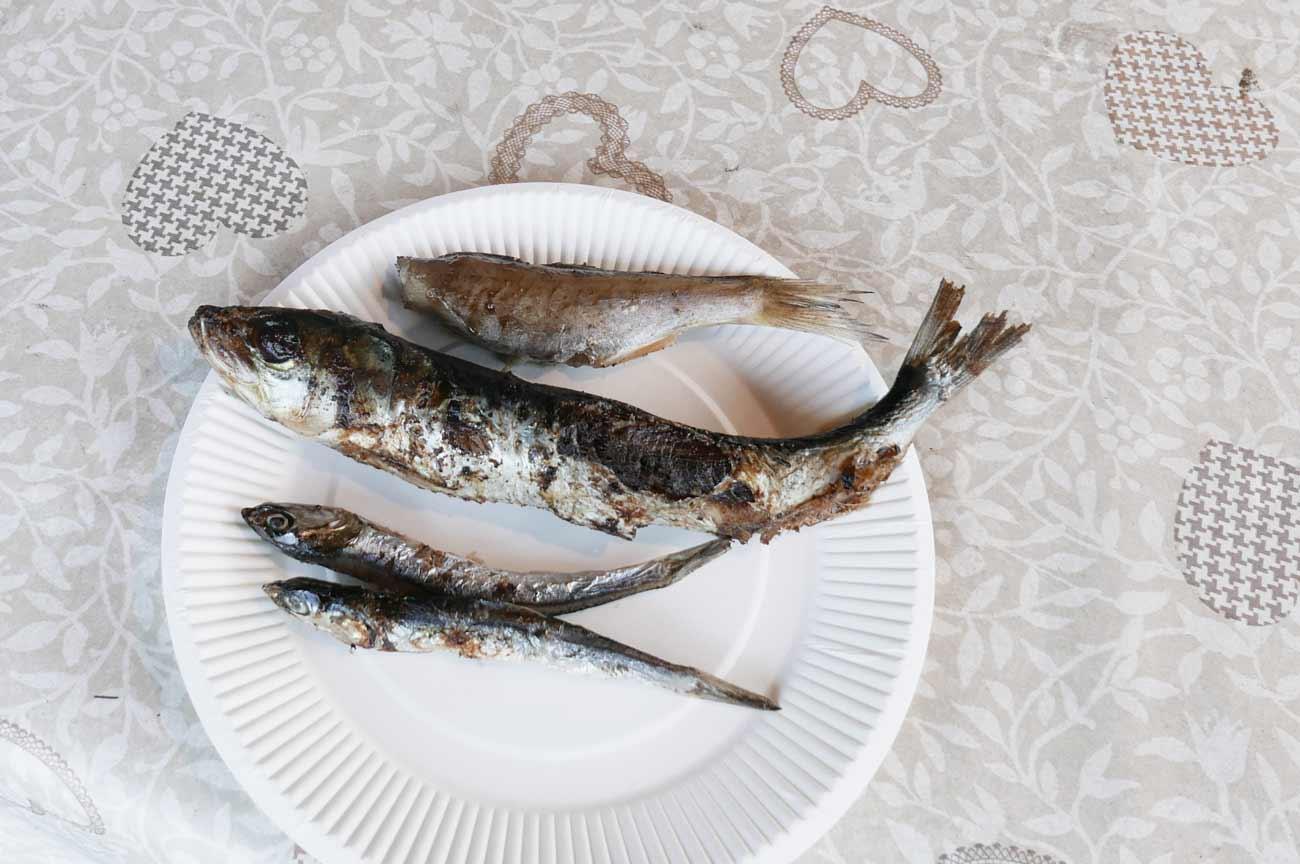試食の干物の画像