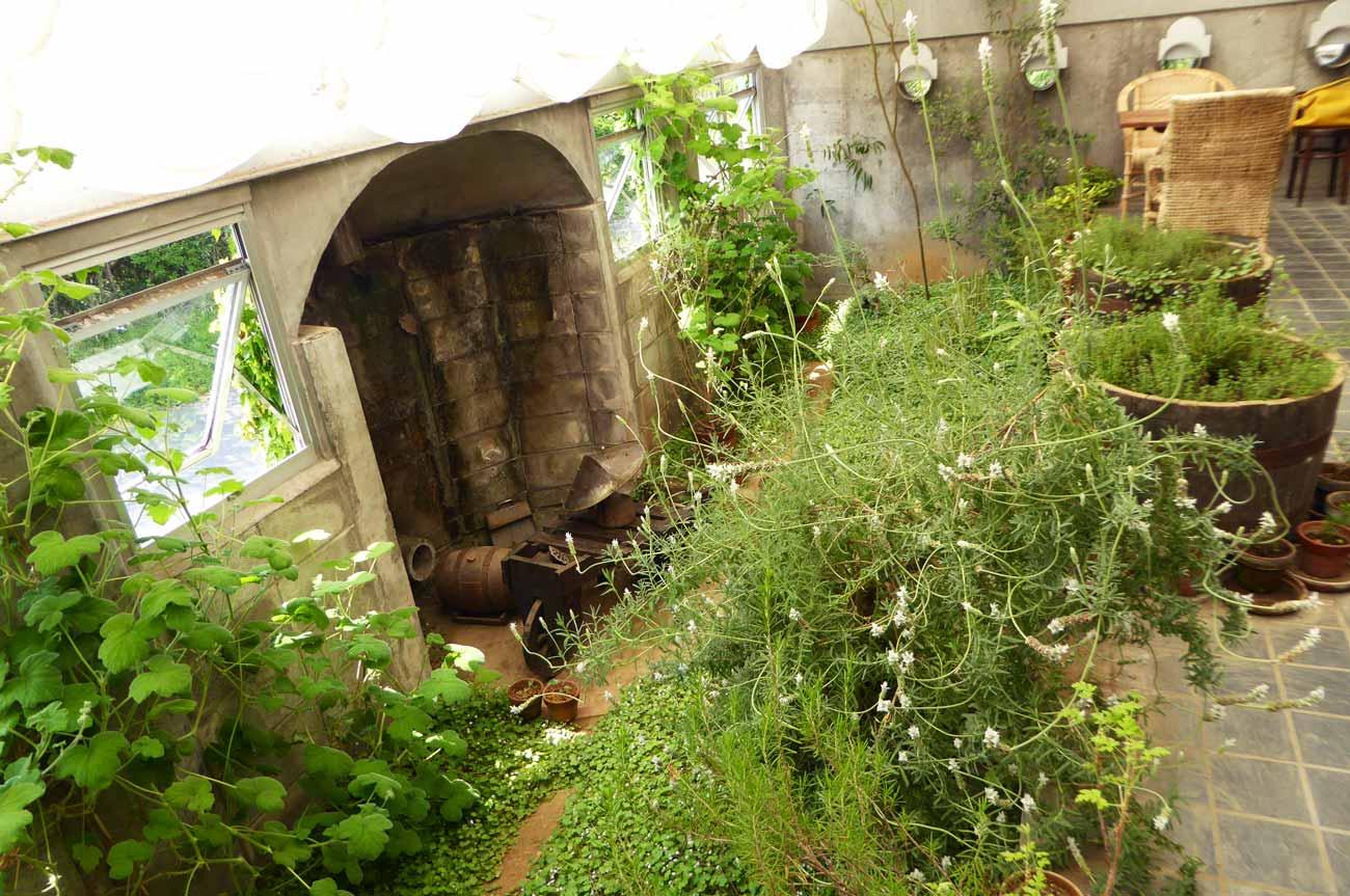 年内の花壇を横から撮影