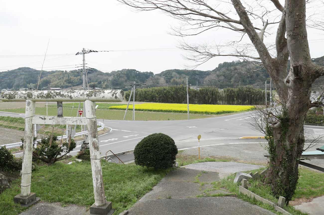 八雲神社の境内