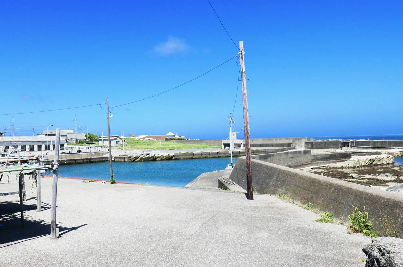 大川港全景の画像