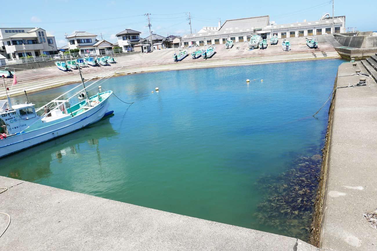 平磯港内の画像