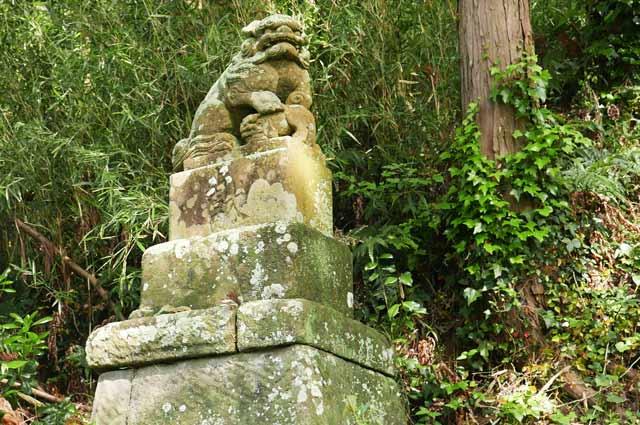 石段途中の狛犬(左)の画像