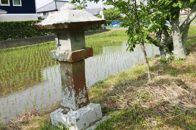 男金神社の石灯籠(左)の画像