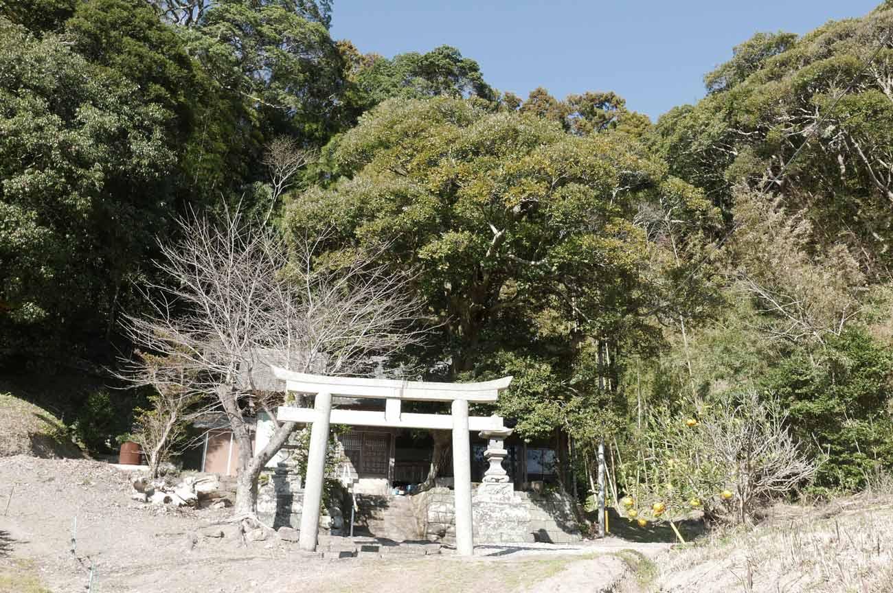 諏訪神社の境内と拝殿の画像