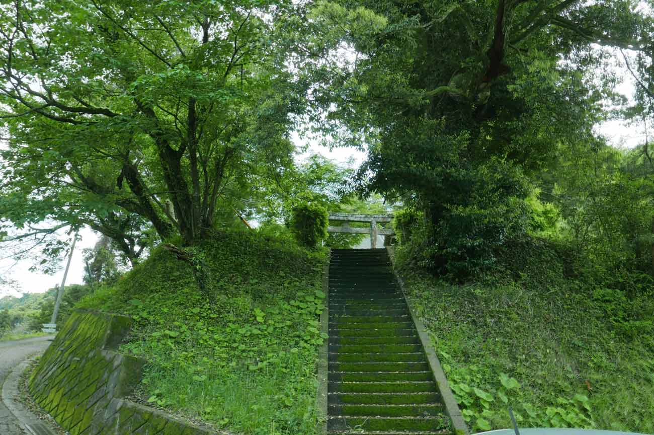 八幡神社の参道の画像
