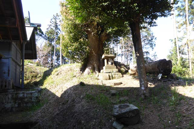 西原神社の本殿右側