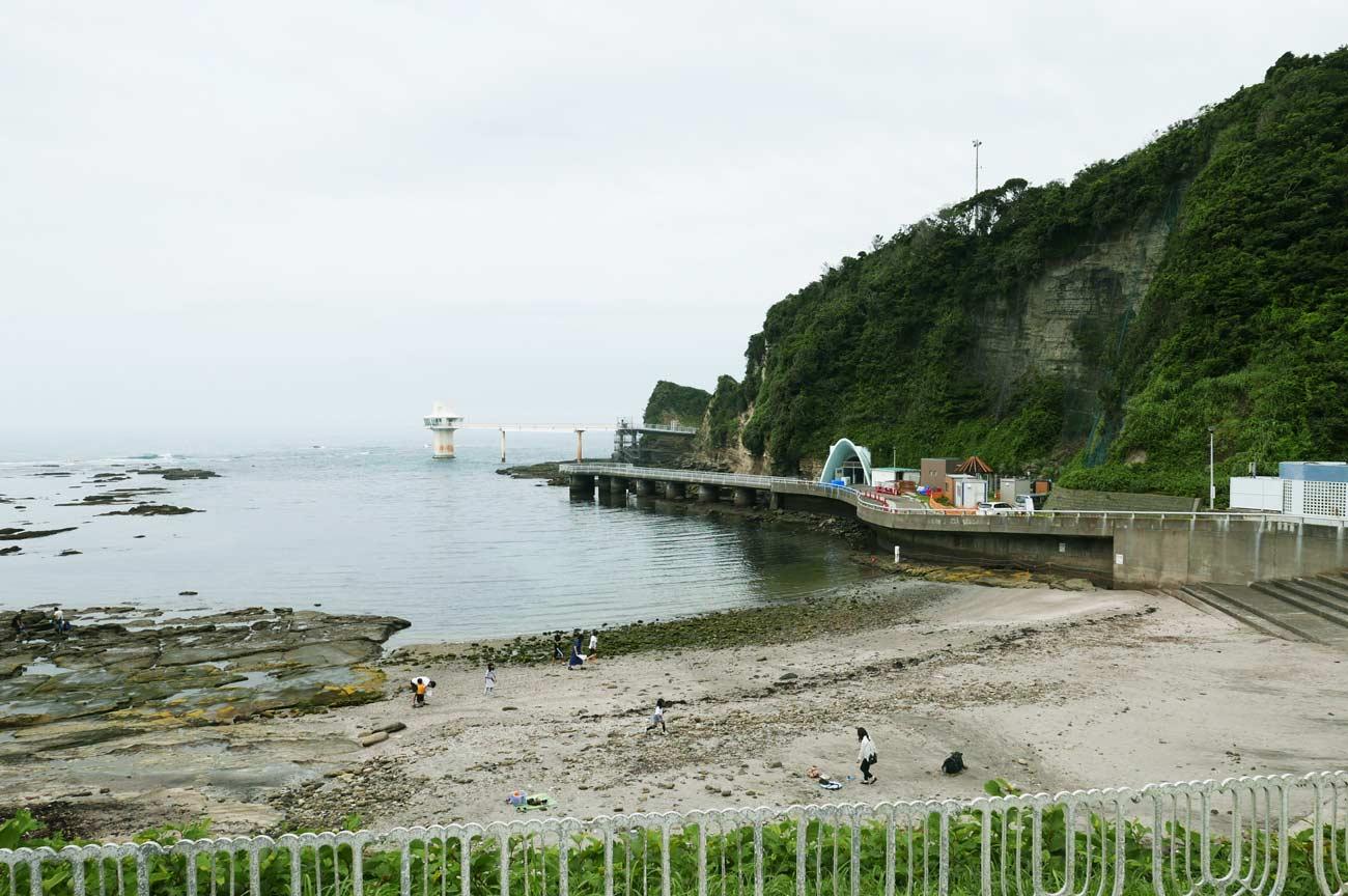 勝浦海中公園の全景