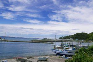 金谷港の釣り