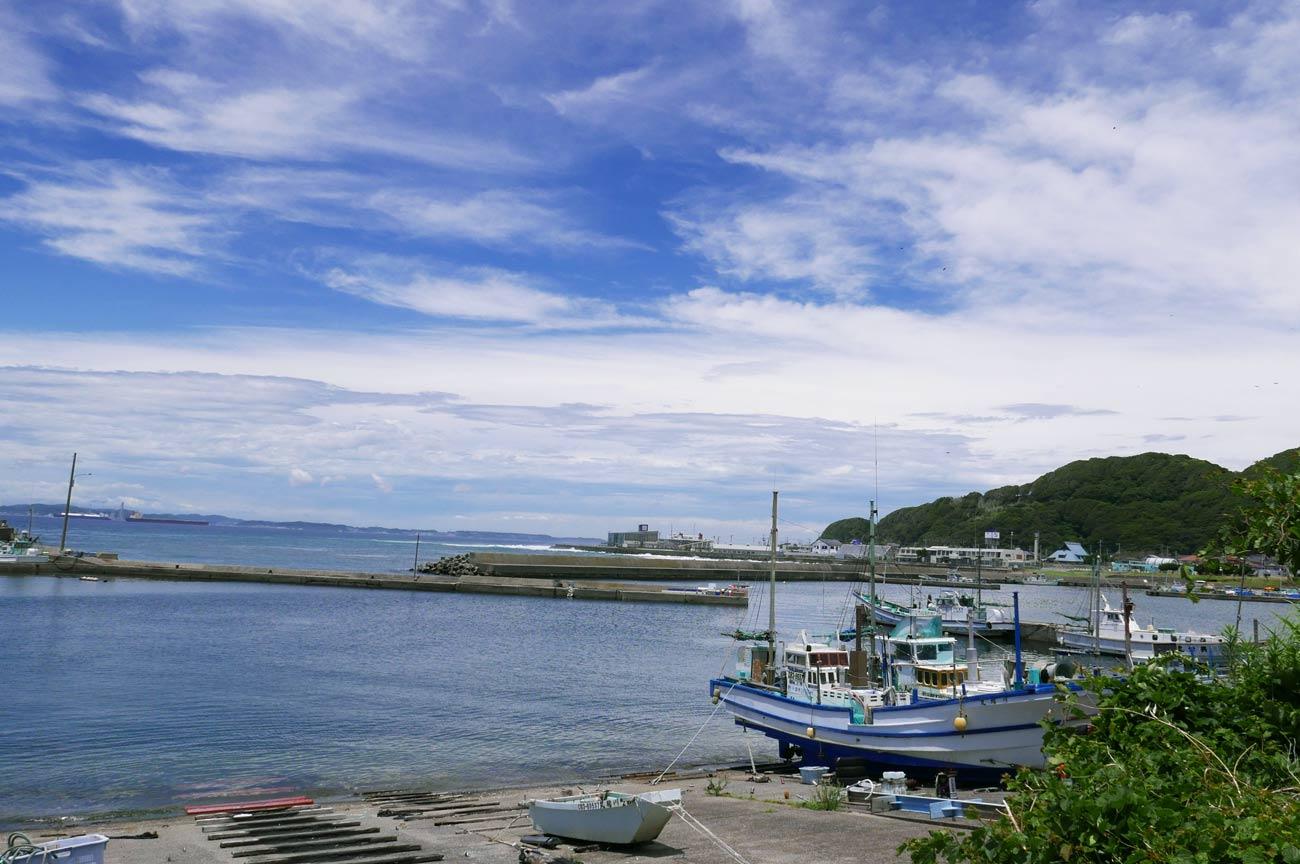 金谷漁港の全景画像