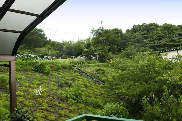 マリヌスの庭の画像2