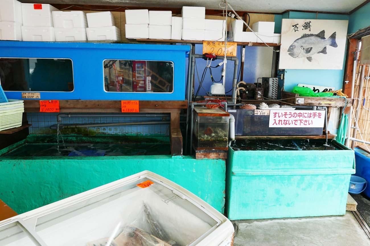 活魚コーナーの画像