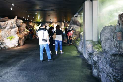 エコアクアロームの入口付近の画像