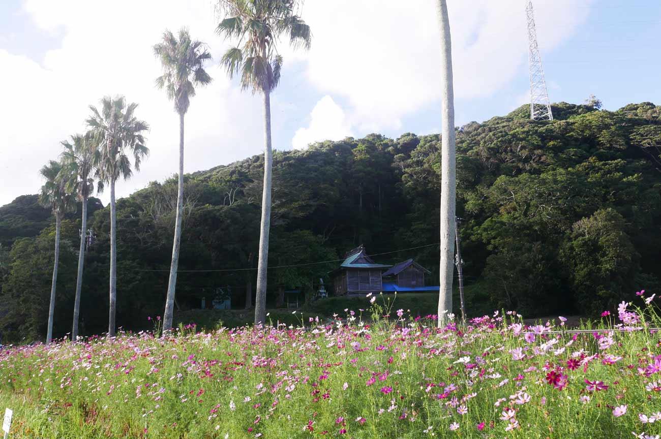 館山市川名の日枝神社の画像