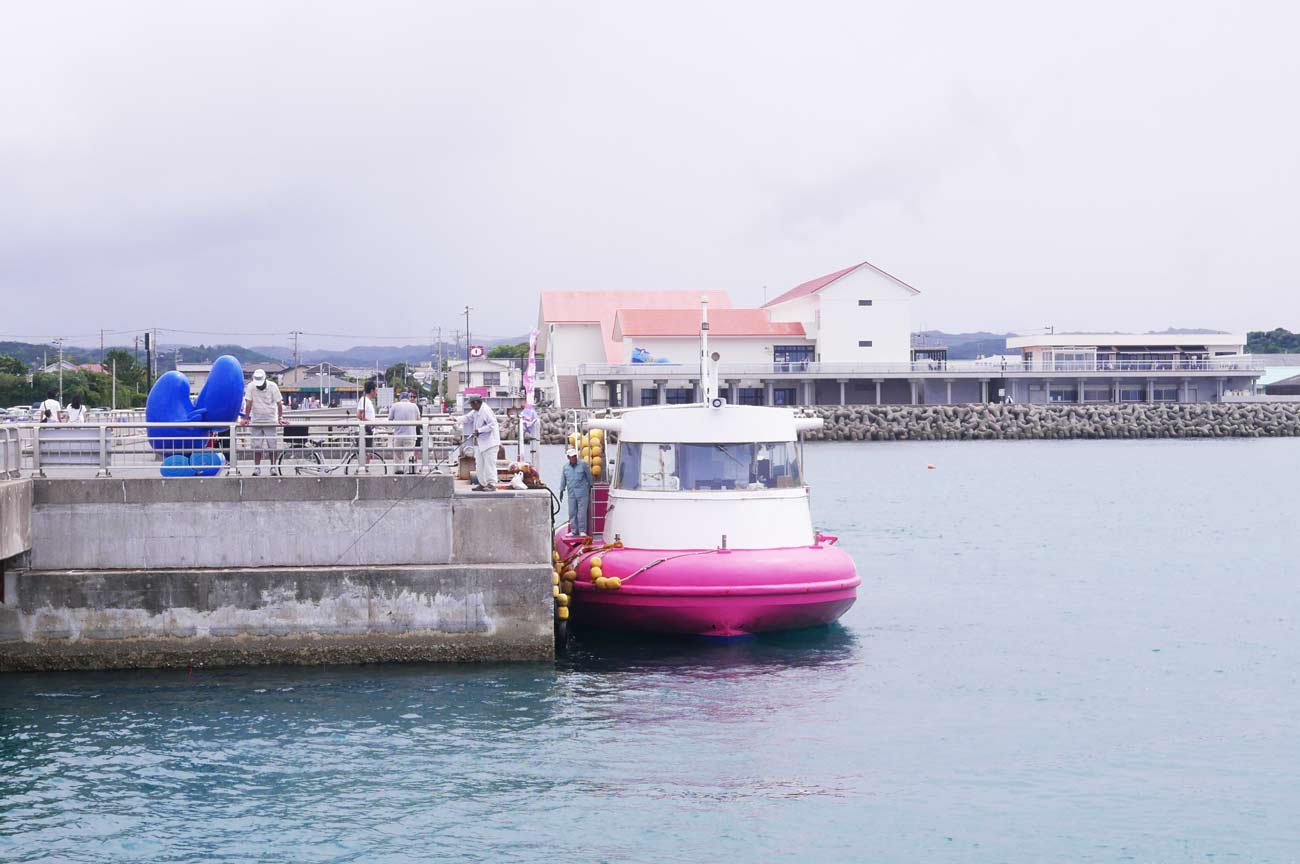 館山水中観光船の画像