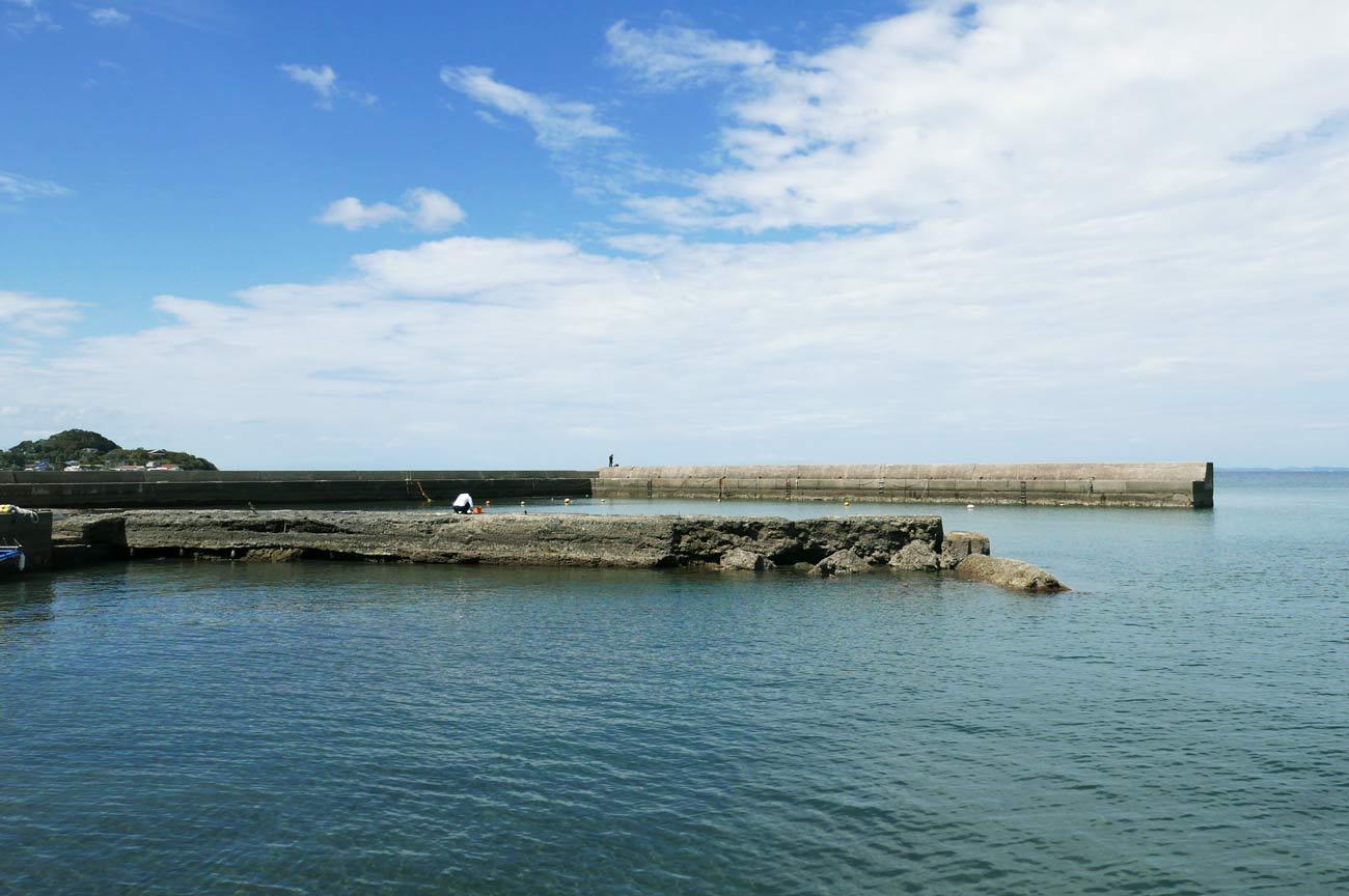 見物堤防の全景