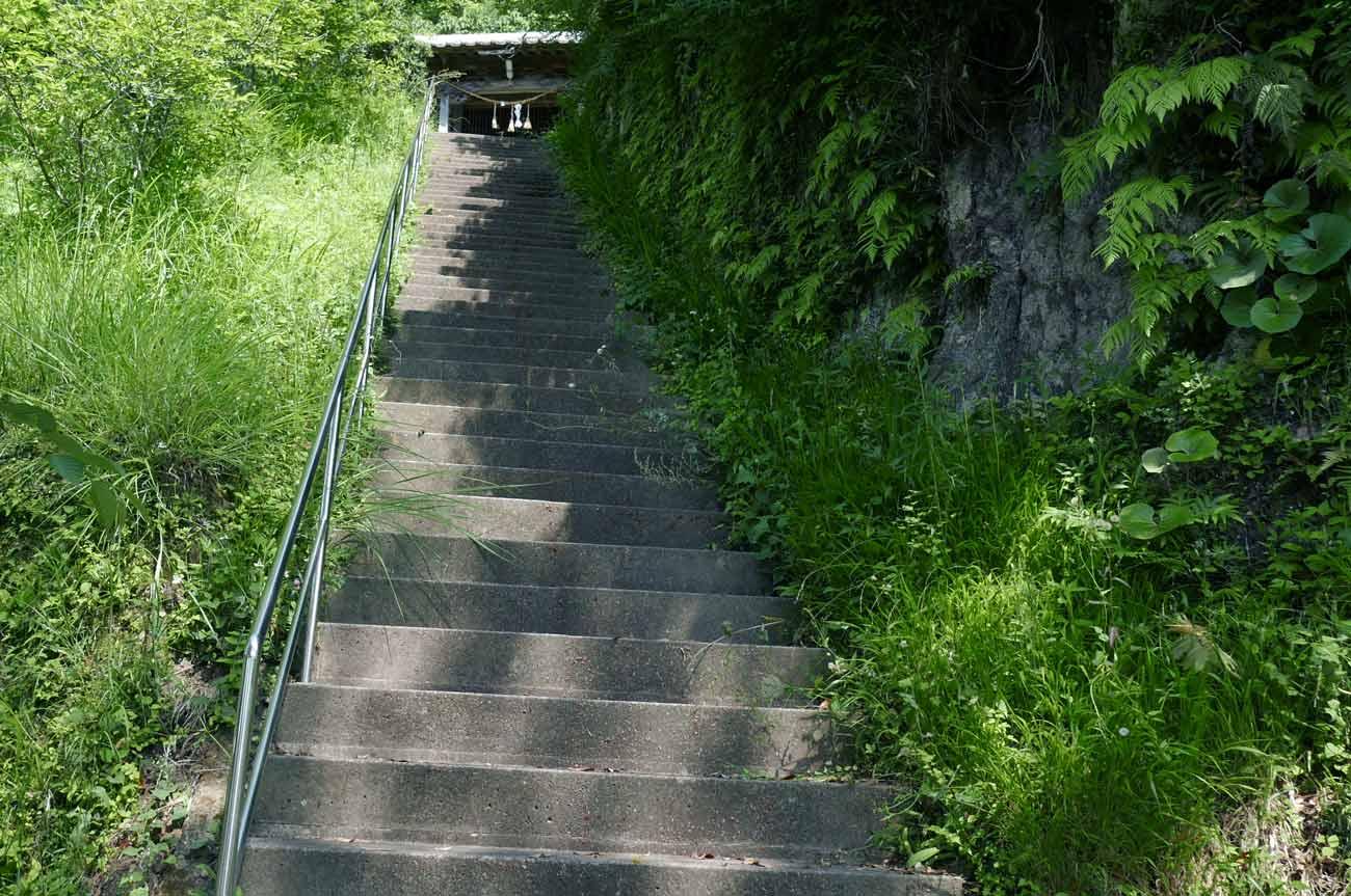 白幡神社の参道