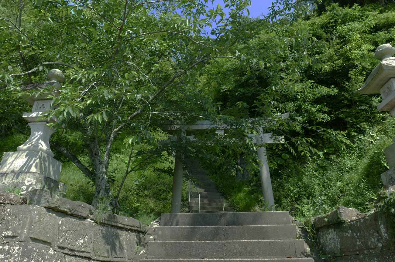 白幡神社の鳥居