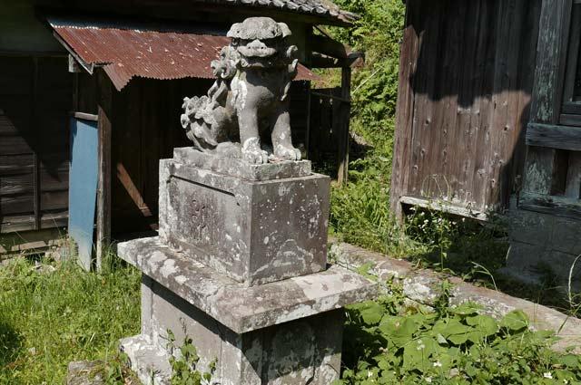 白幡神社の狛犬(左)