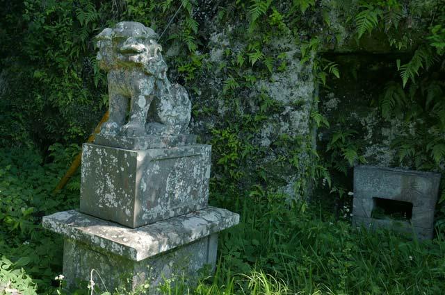 白幡神社の狛犬(右)