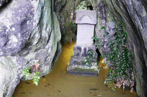 黄金井戸のヒカリモ