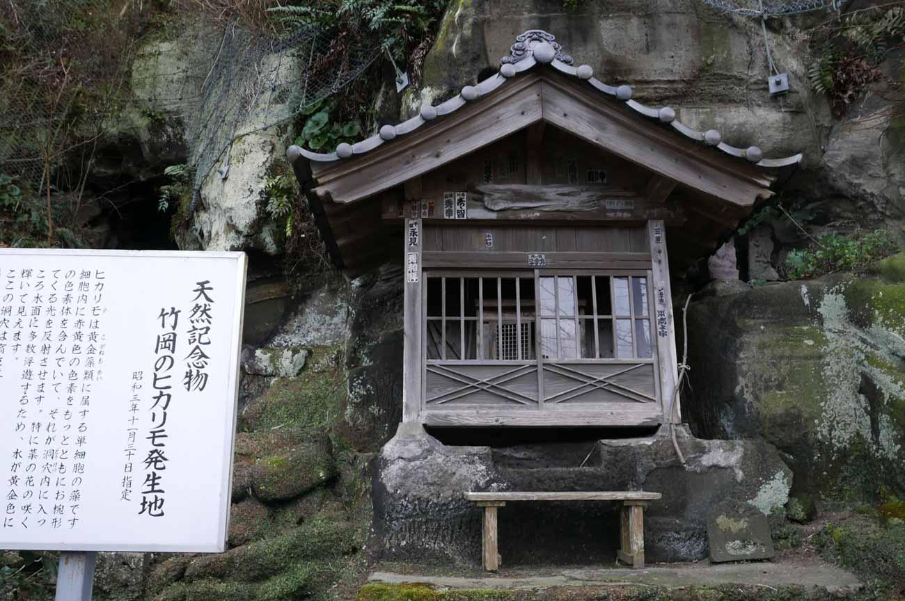黄金井戸右の龍神堂