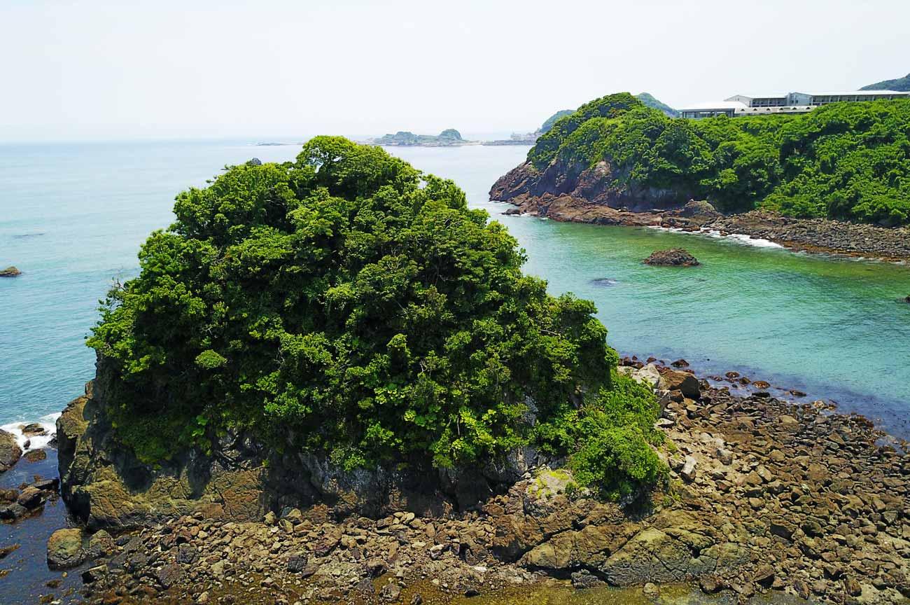 雀島のアップ画像