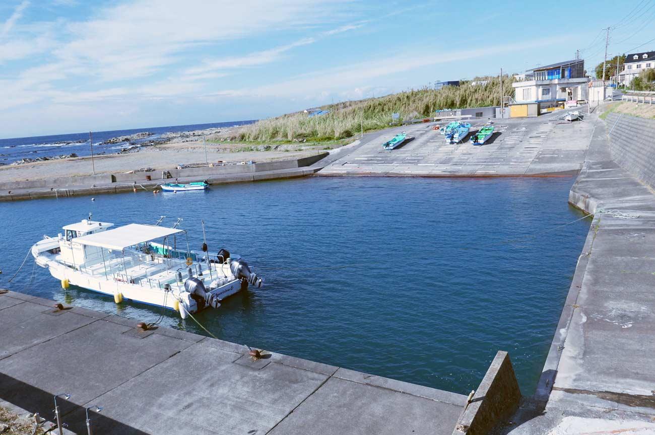 港奥のポイント