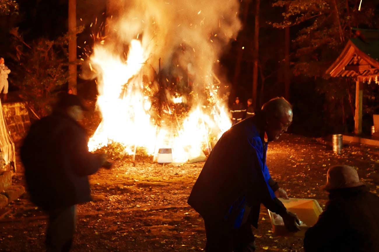燃え盛る生木