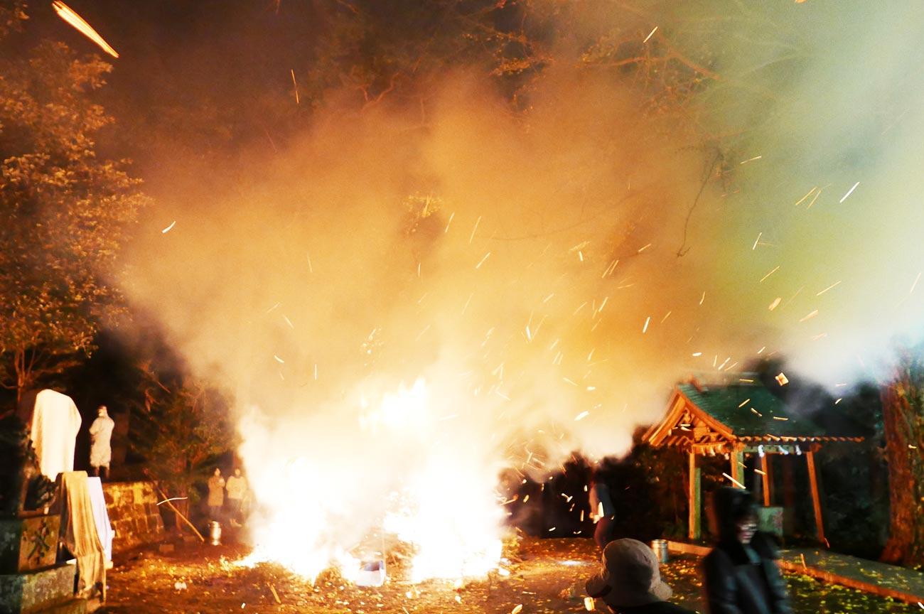 激しく燃える生木