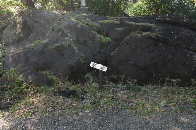 美術館入口の鯨岩