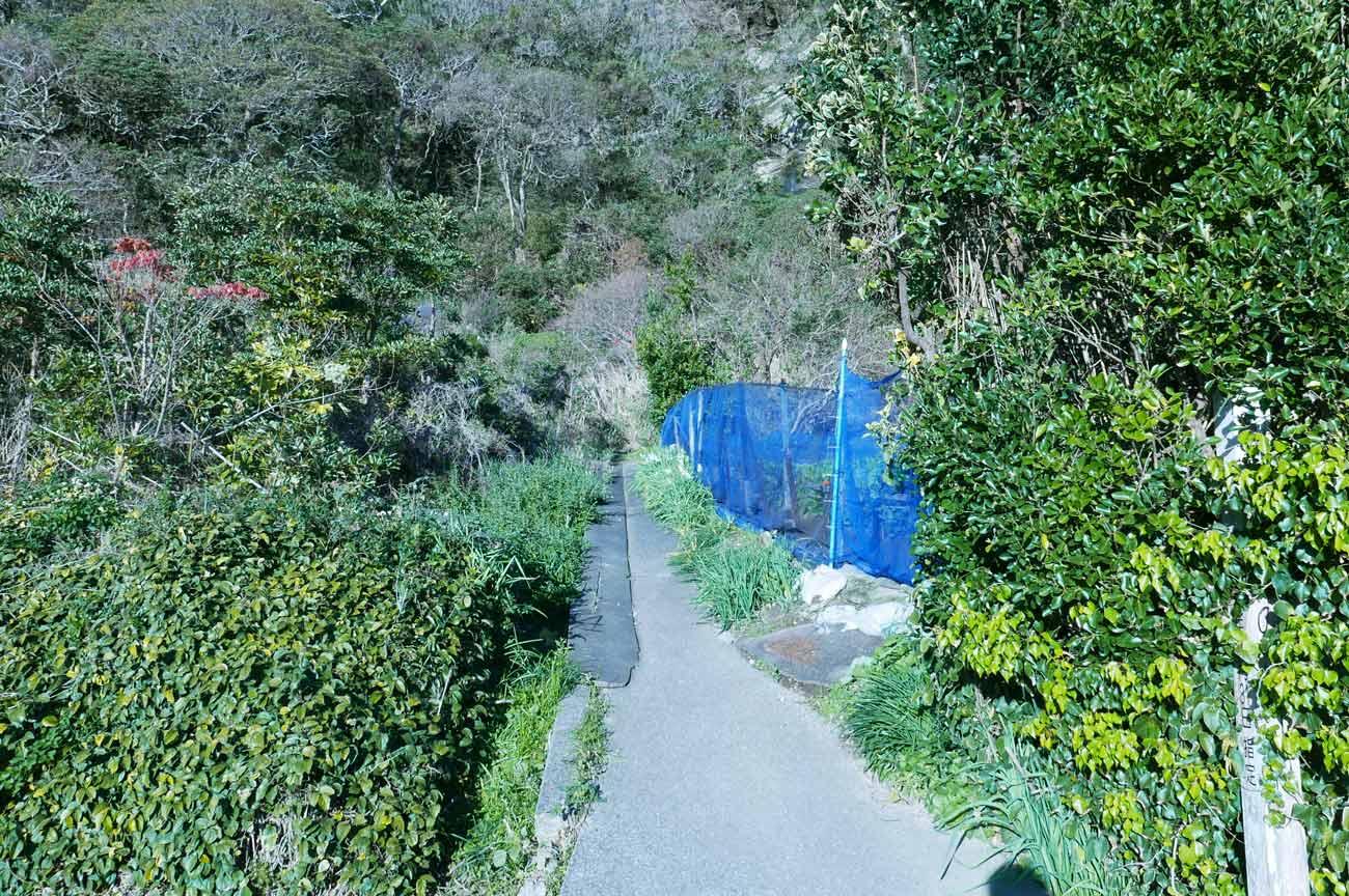 白浜鍾乳洞入口の細い道