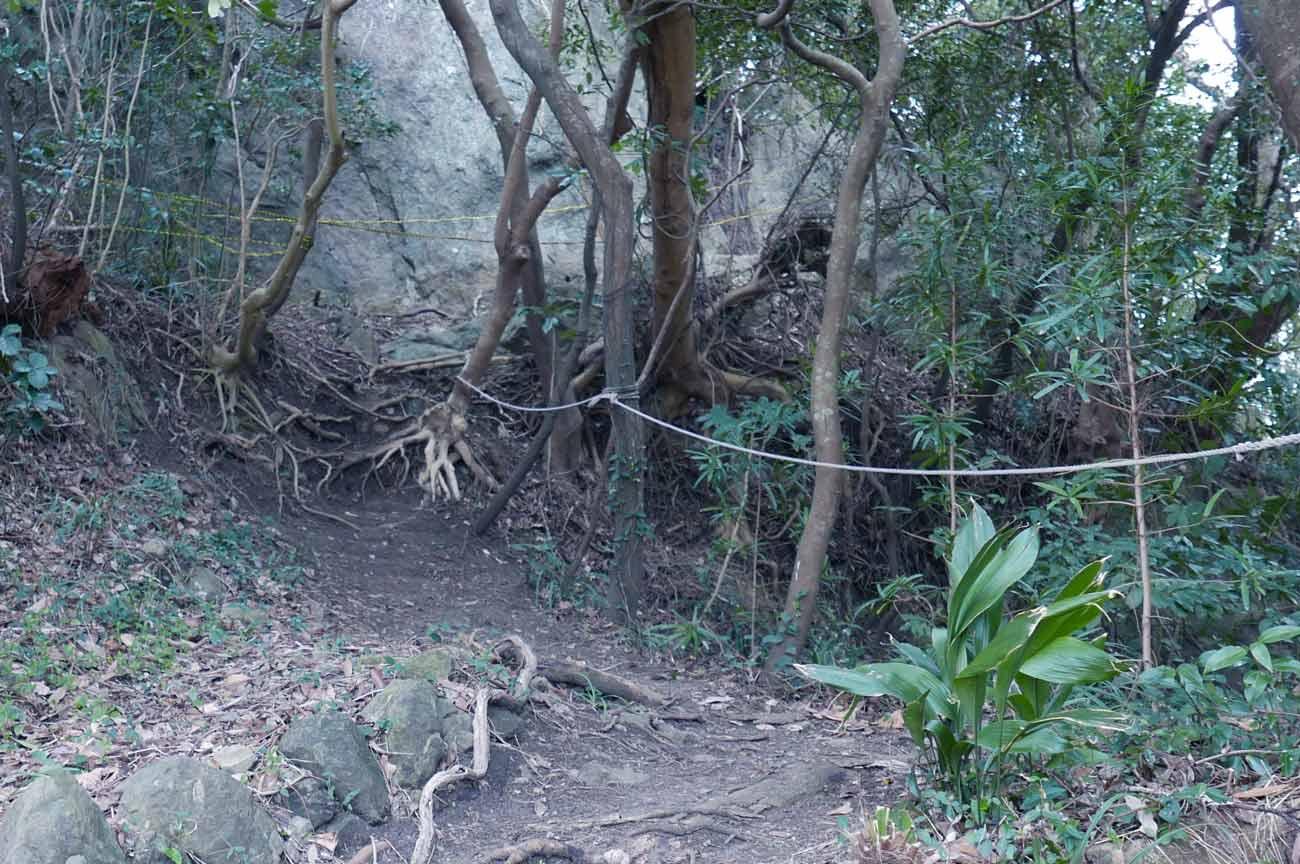 登り口のロープ