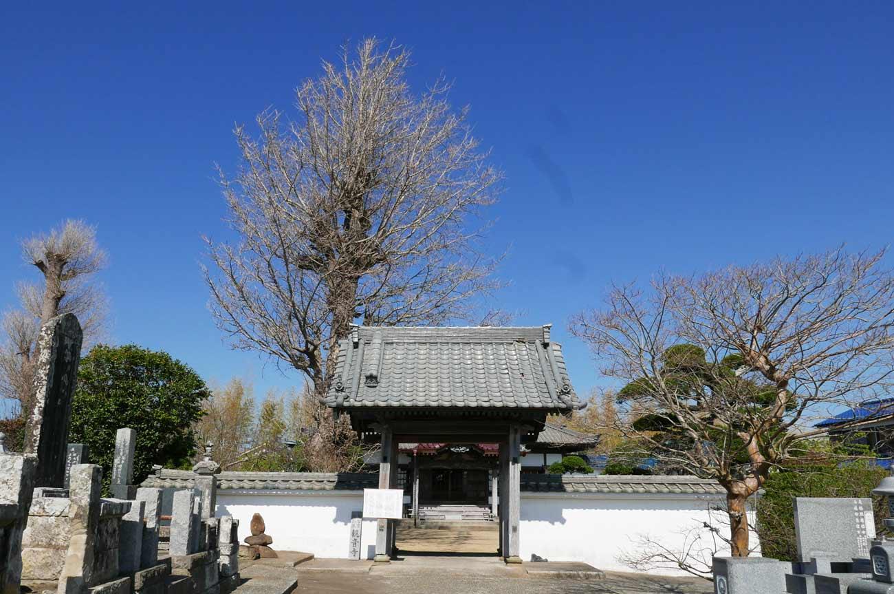 観音寺の山門