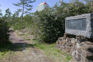 鹿島鳴秋の浜千鳥の歌碑