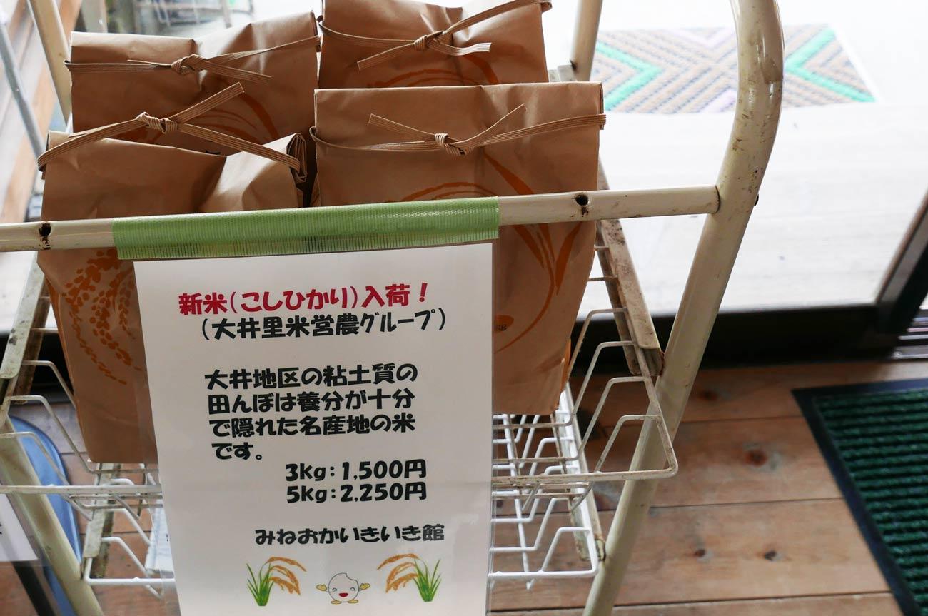 大井里米営農グループのこしひかり