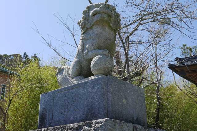 八雲神社の狛犬(左)