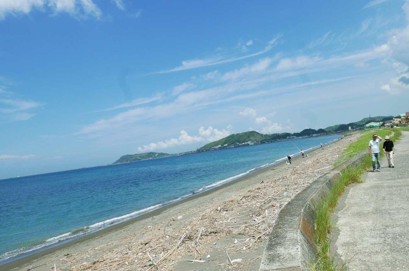 館山湾の釣り場